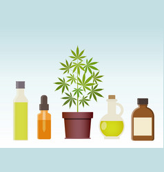 Marijuana plant and cannabis oil medical vector