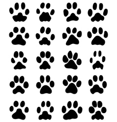print cats paws vector image