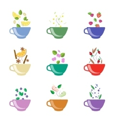 Tea Flavors Set vector image