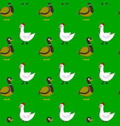 farm bird pattern vector image
