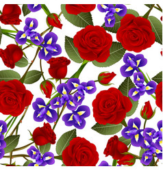 beautiful red rose and iris flower on white vector image