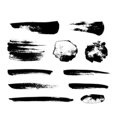 Set of black grunge brushes vector