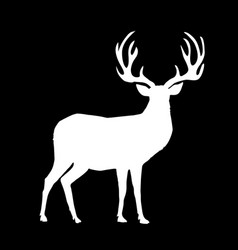 white silhouette of reindeer with big horns on vector image