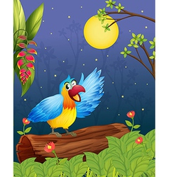 A colorful parrot in a bright evening vector image vector image