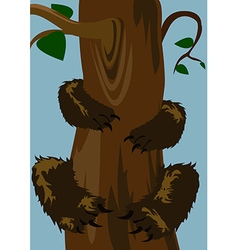 Bear on the tree vector