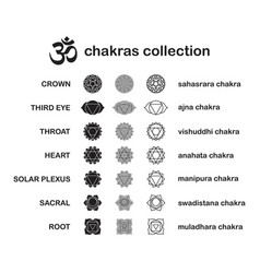 Chakra pictograms set chakras used in hinduism vector