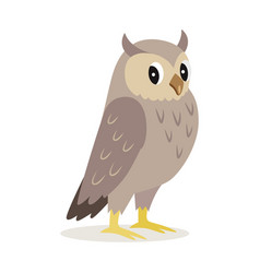 icon of cute owl with big eyes forest animal vector image