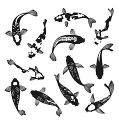 koi fish silhouettes vector image