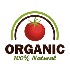 Organic product guaranteed seal vector