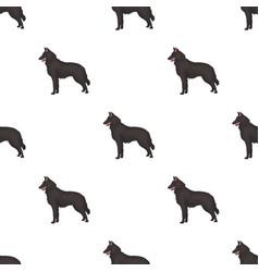 the dark belgian wolf belgium single icon in vector image