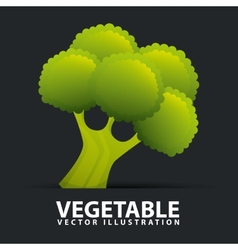 vegetables icon vector image