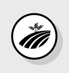 wheat field sign flat black icon in white vector image