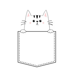 cute cat in the pocket pink cheeks holding paw vector image