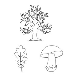 Forest and nature outline icons in set collection vector