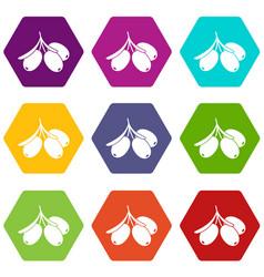 sea buckthorn branch icon set color hexahedron vector image