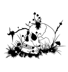 Skull and mushrooms vector