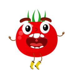 Tomatoes cartoon vector