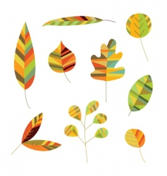 decorative foliage vector image vector image