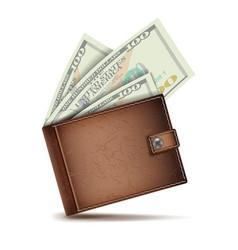 full wallet brown color full wallet vector image