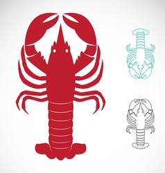 image of an lobster vector image