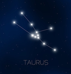 Taurus constellation in night sky vector image vector image