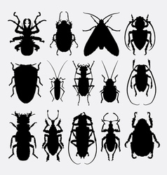 Bug insect animal silhouette vector