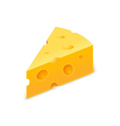 Cheese cheddar piece slice block swiss vector