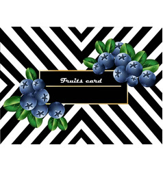Juicy blueberry fruits card abstract striped vector