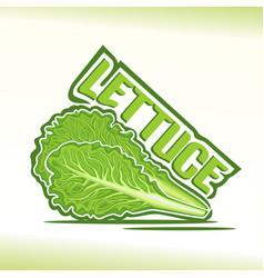 logo for lettuce vector image