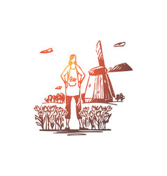netherlands tulips windmill travel symbol vector image