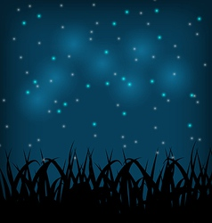 Night sky with grass field vector