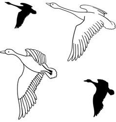 Set of flying wild ducks vector