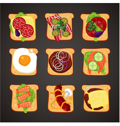 top view sandwiches with different topping vector image