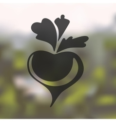 Beet icon on blurred background vector