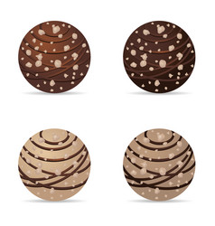 Chocolate nuts ball with hazelnut dark and white vector