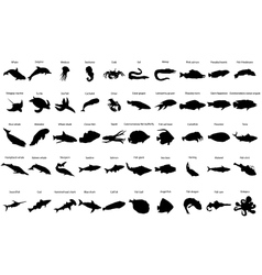 Fishes silhouettes vector image