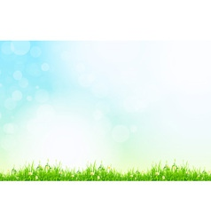 Fresh green grass with blue bokeh and sunlight vector