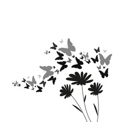 Silhouette of flying butterflies and flowers vector