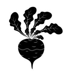 silhouette turnip cartoon icon design isolated on vector image