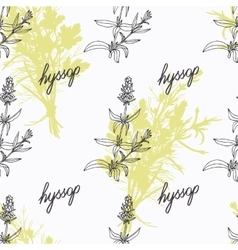 Hand drawn hyssop branch flowers and handwritten vector image vector image