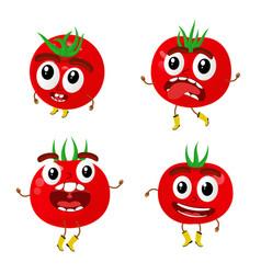 tomatoes cartoon vector image vector image