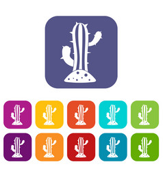 Cactus icons set flat vector