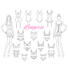 female lingerie collection with beautiful fashion vector image