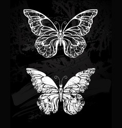 painted with chalk butterfly morpho vector image