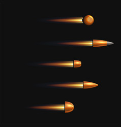 weapon bullets set on black background vector image