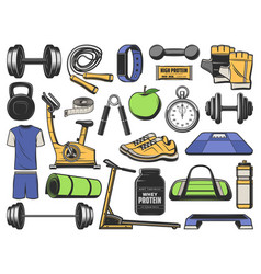 fitness gym objects sport exercise equipment vector image