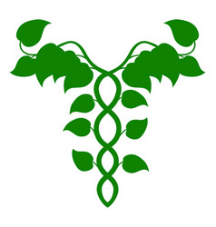 Holistic medicine caduceus or dna concept vector