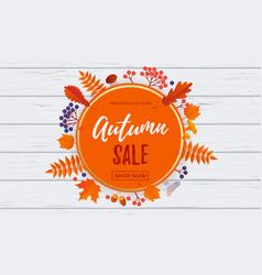 autumn sale banner discount september shopping vector image
