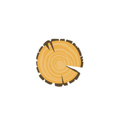 cross section tree s annual growth rings vector image