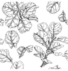 Hand drawn ficus branch pattern vector